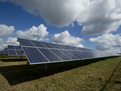 solar panels on green field