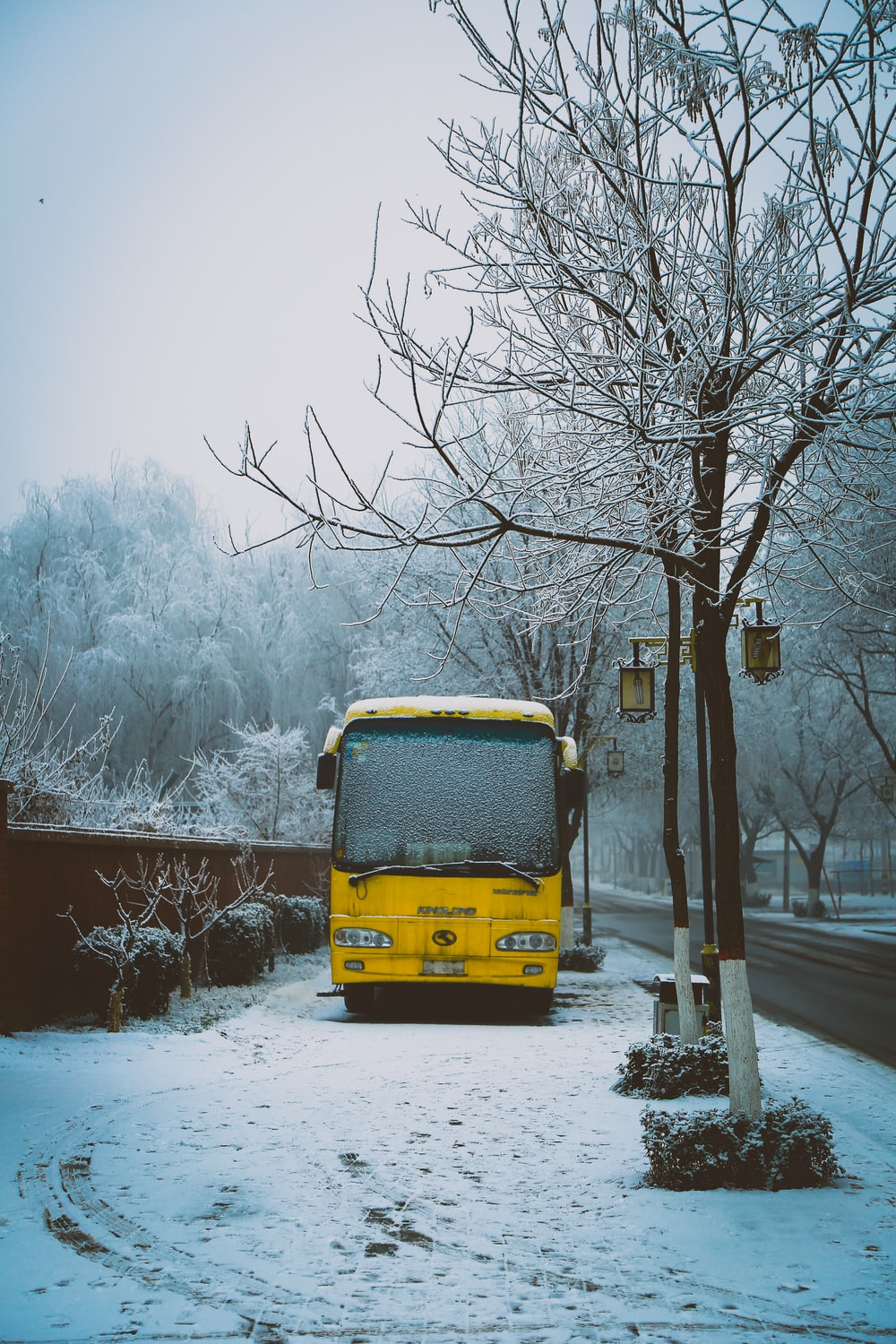 photo of yellow bus on sidewalk