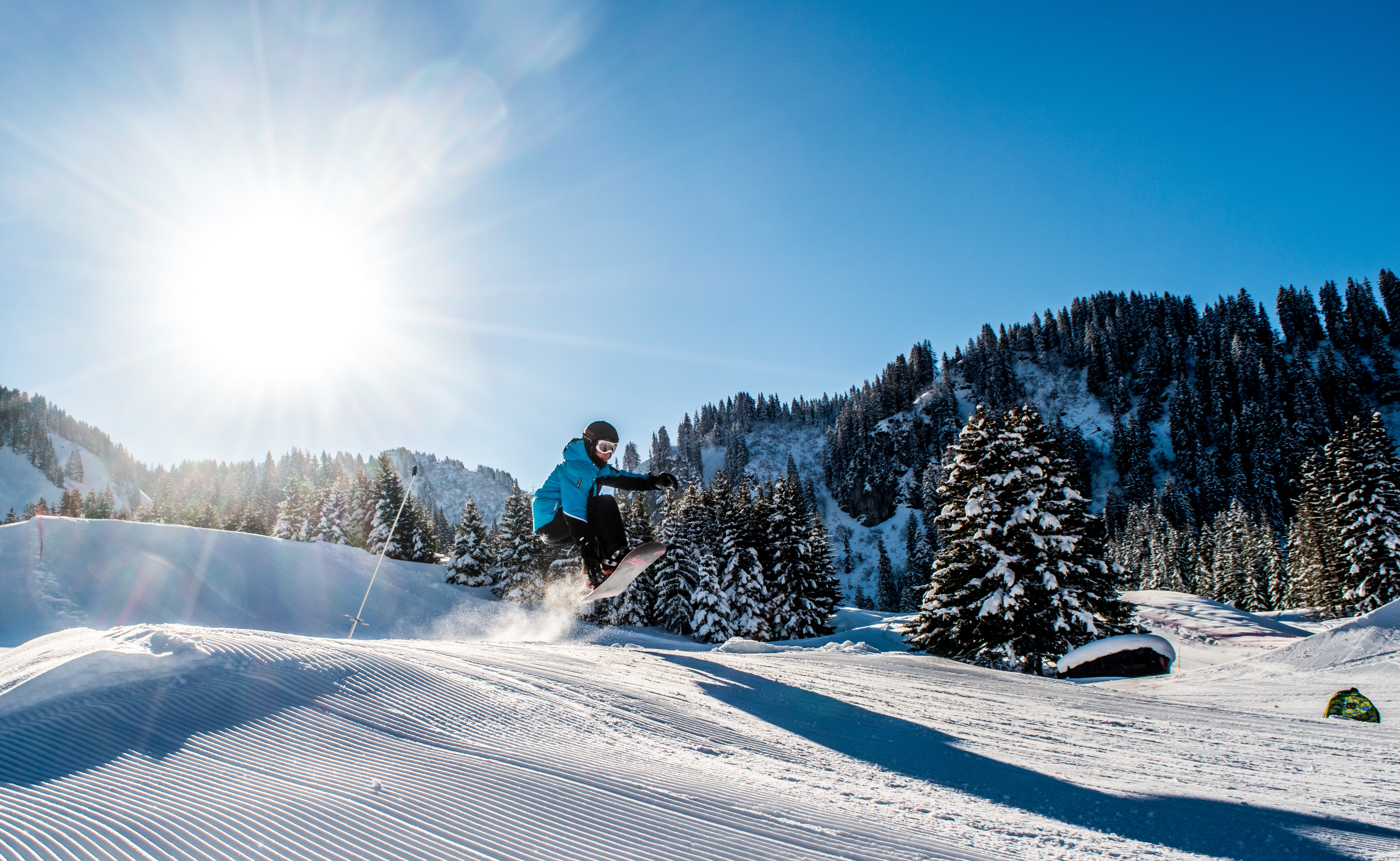 person on snowboard in distant of trees