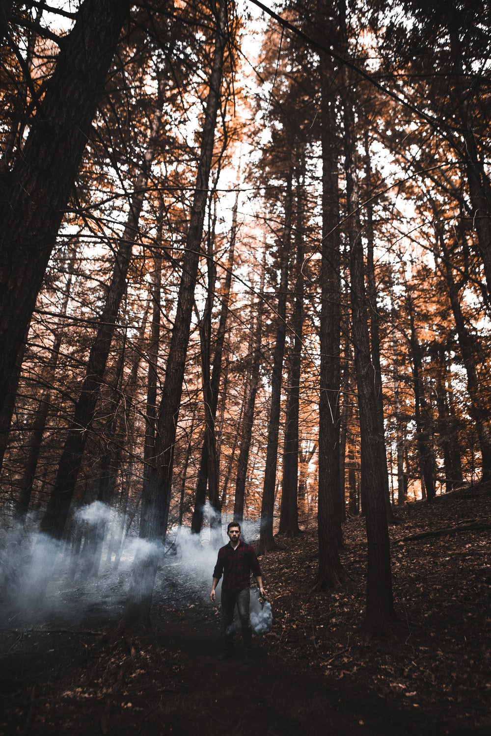 man standing at forest