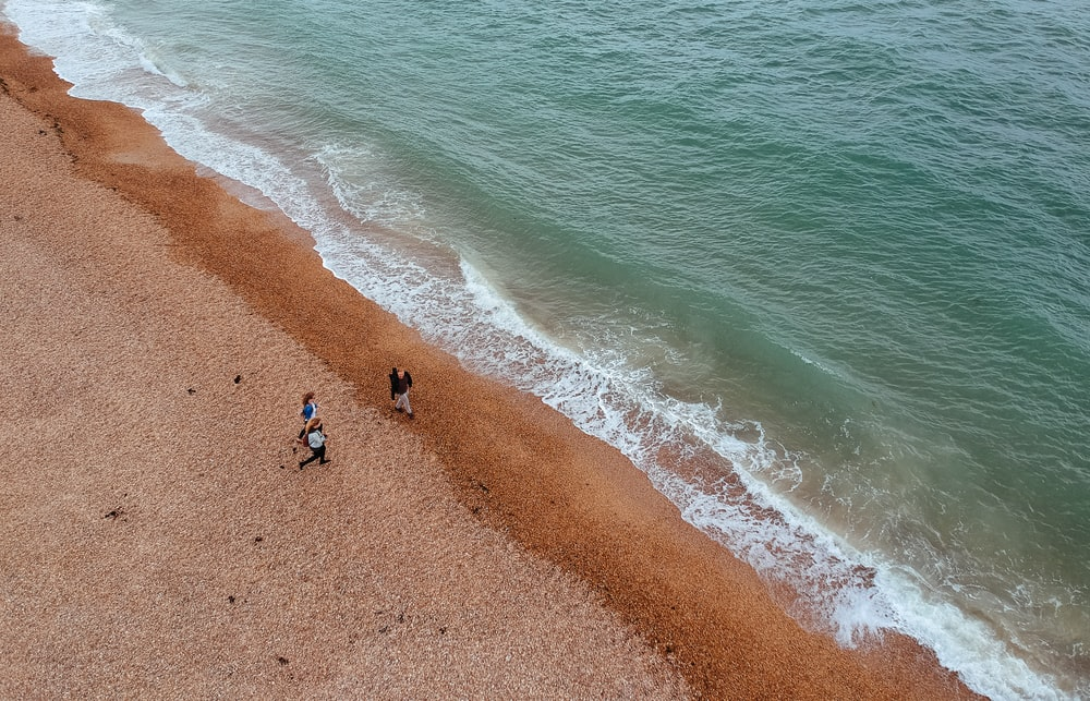 people standing near beach