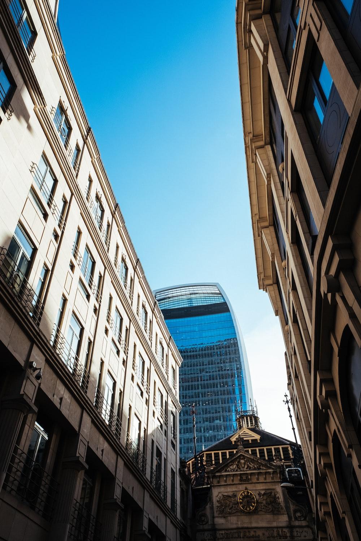 brown high rise buildings