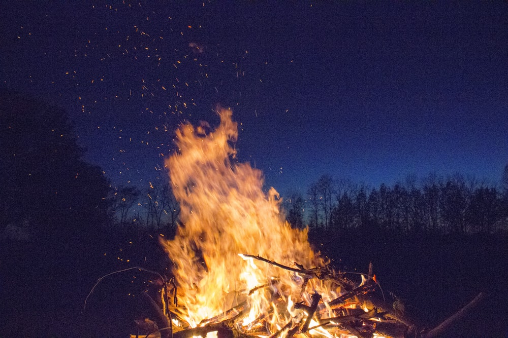 bonfire with silhouette of trees in distant