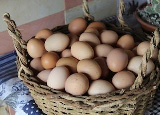 eggs in brown wicker basket