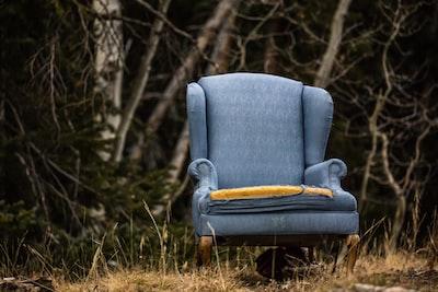 gray padded sofa chair near trees