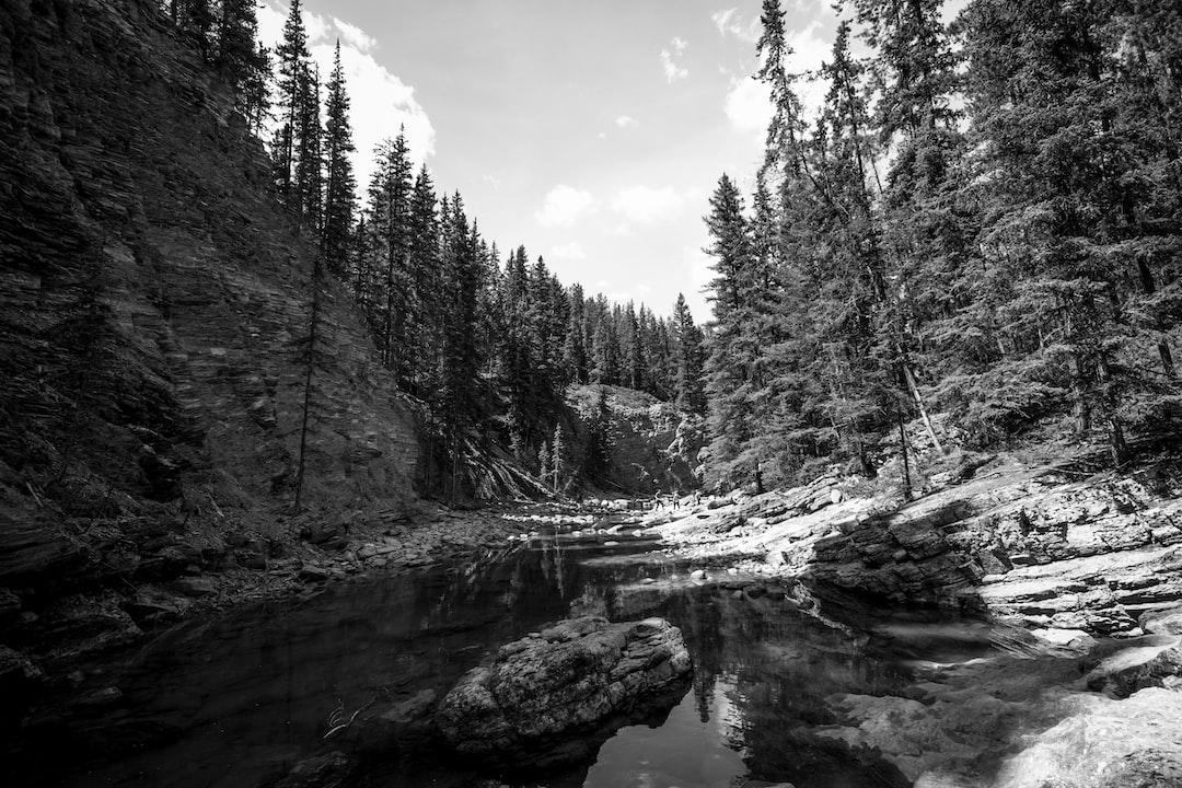 Black and white Maligne Canyon