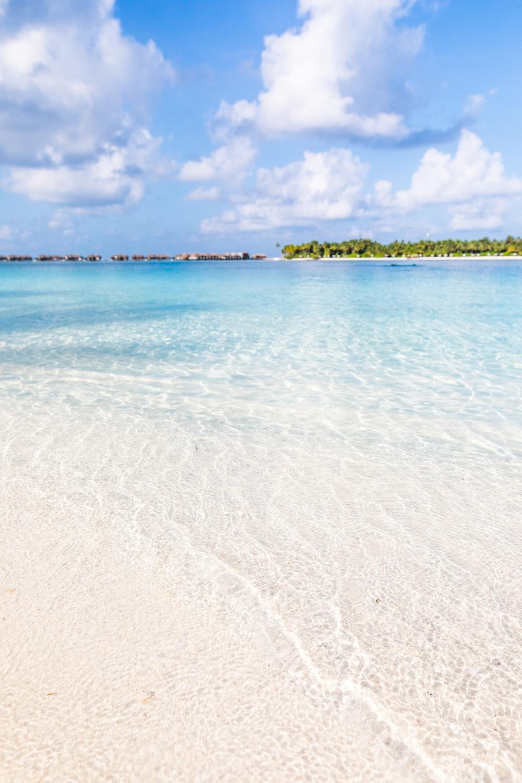 seashore during daytime