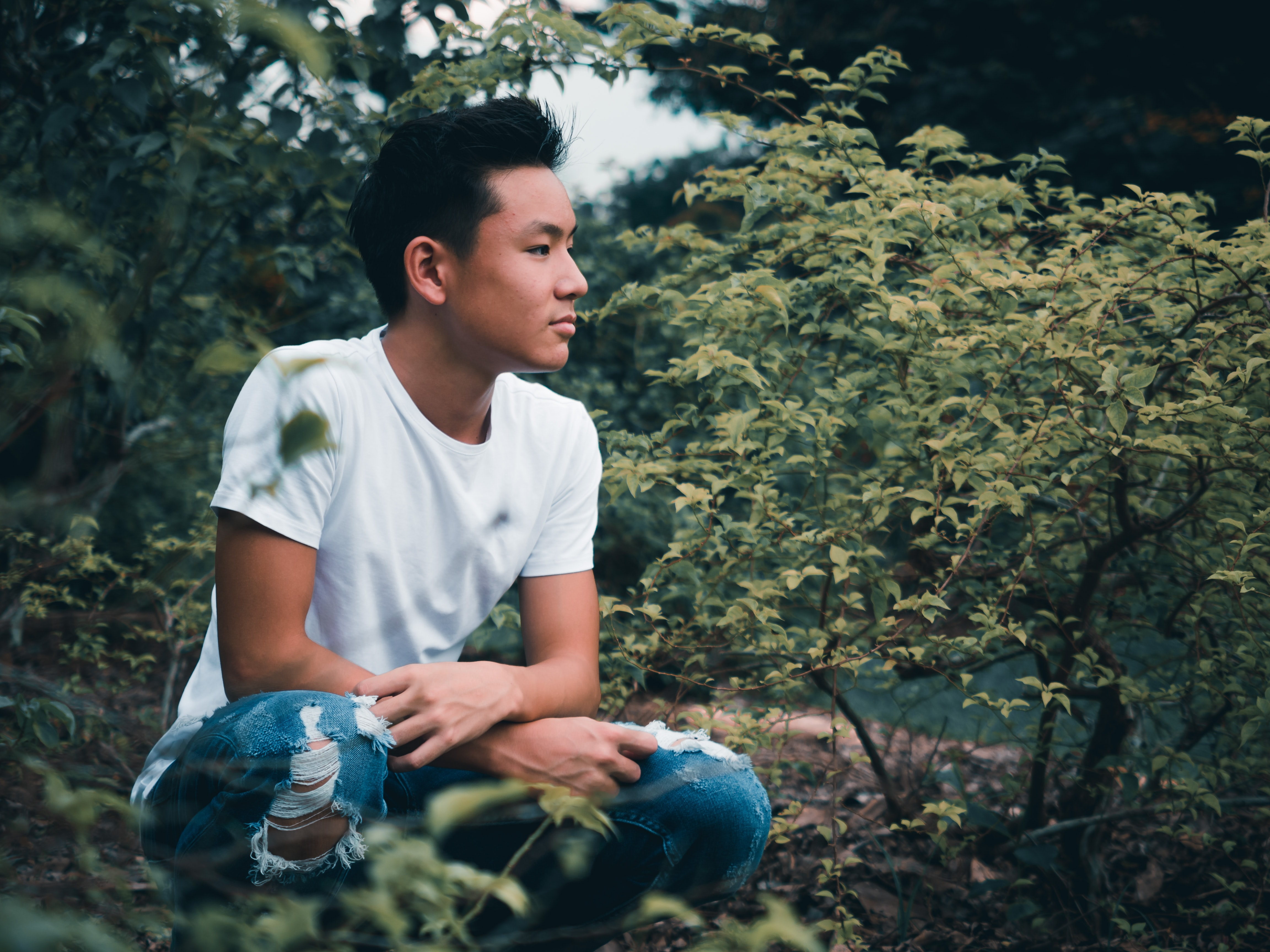man sitting on ground surrounded by green leaf plants
