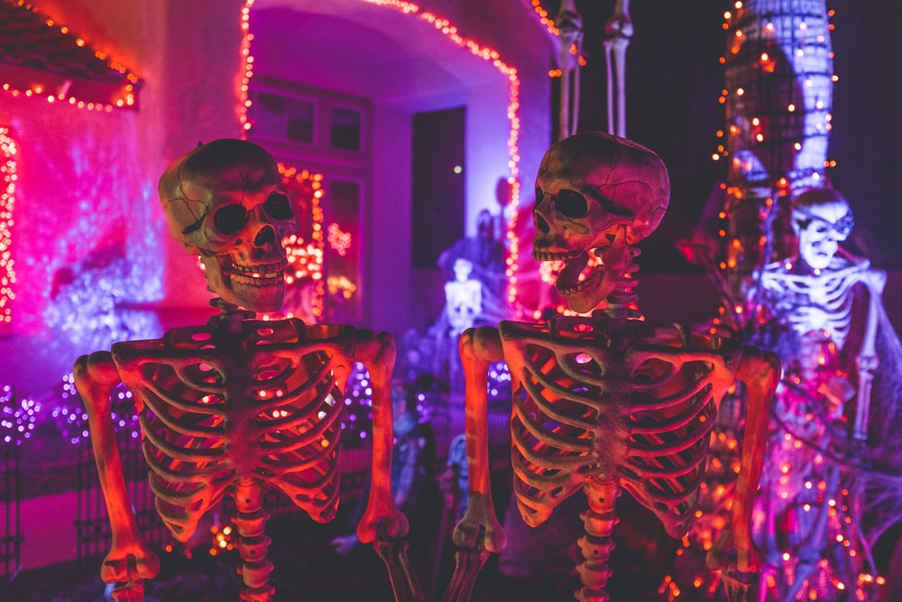 two skeleton near white concrete building with string lights at daytime, stoner Halloween ideas