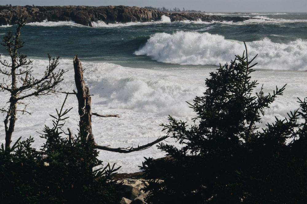high ocean waves in beach