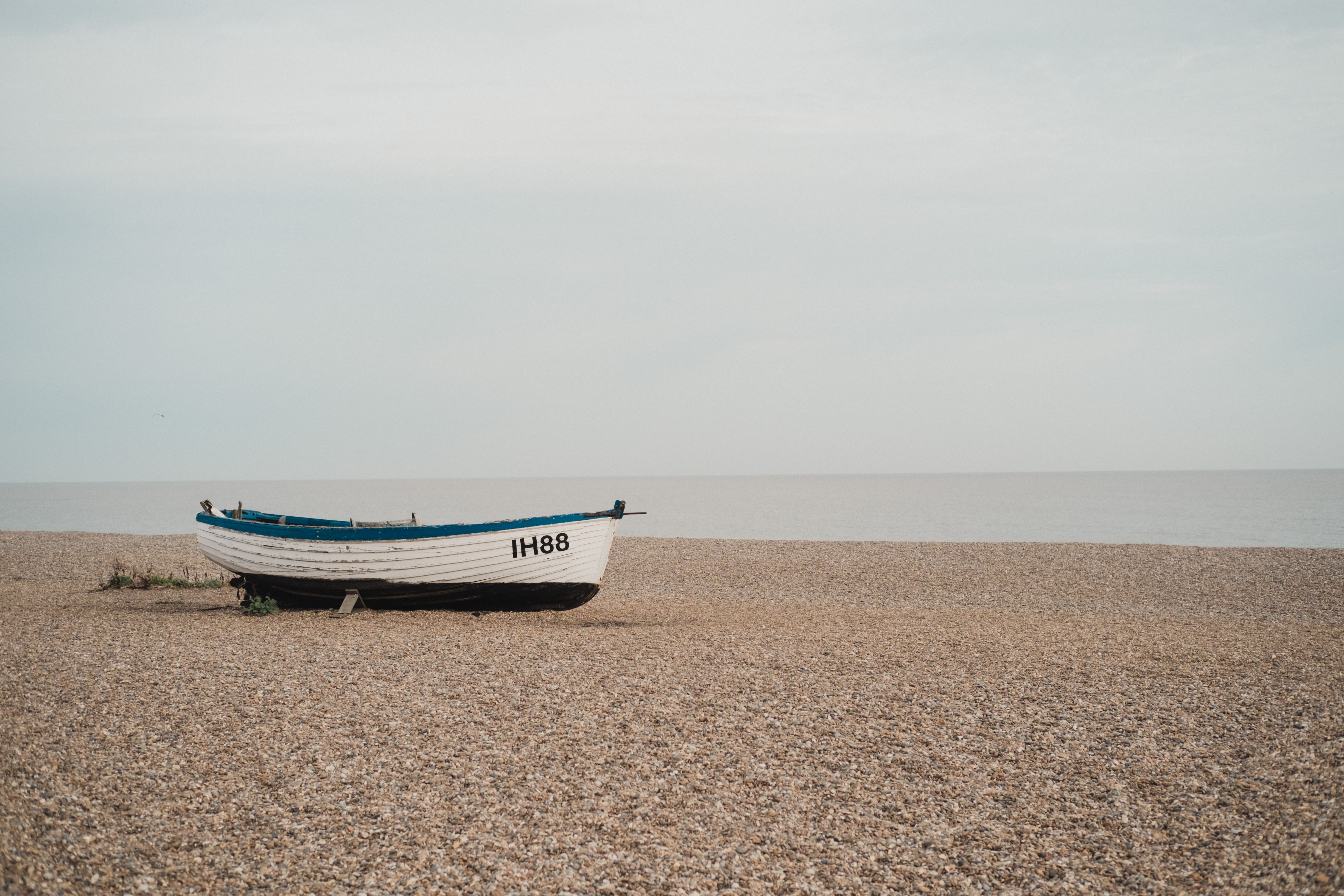 white and blue IH88 rowboat on sand beside large body of water
