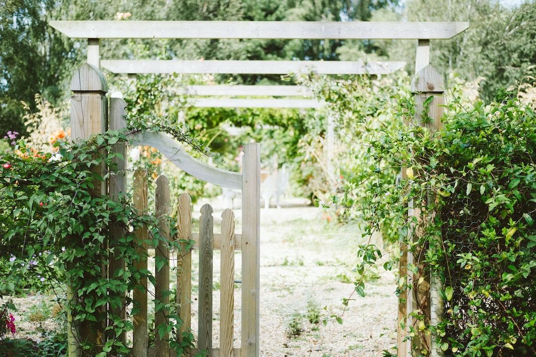 spending time in your garden