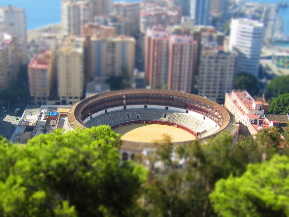 birds eye view photo of stadium and skyscraper