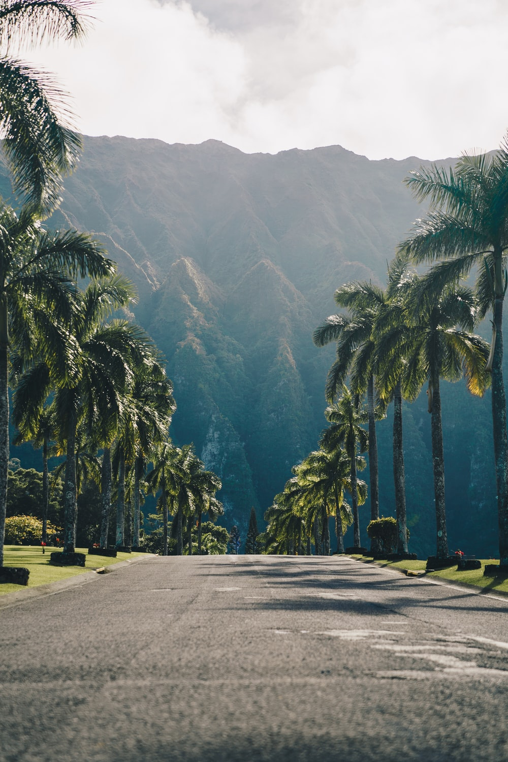 500 Hawaii Pictures Download Free Images On Unsplash