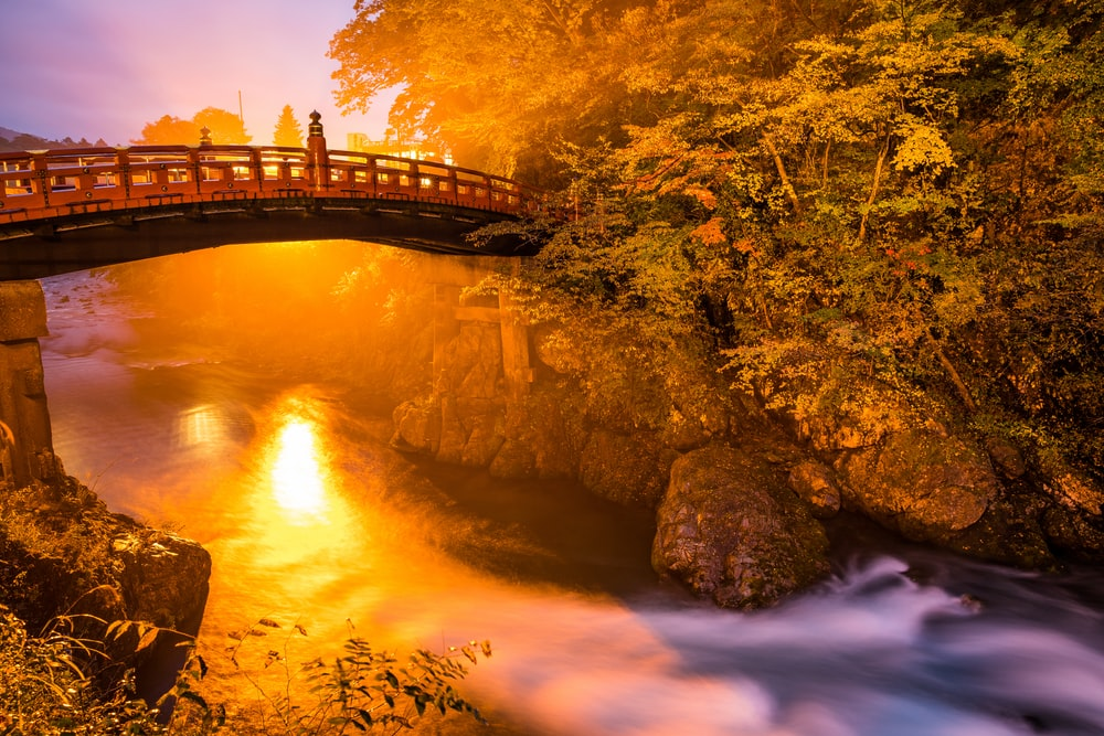 brown and black bridge surrounded by body of water and trees at golden hour