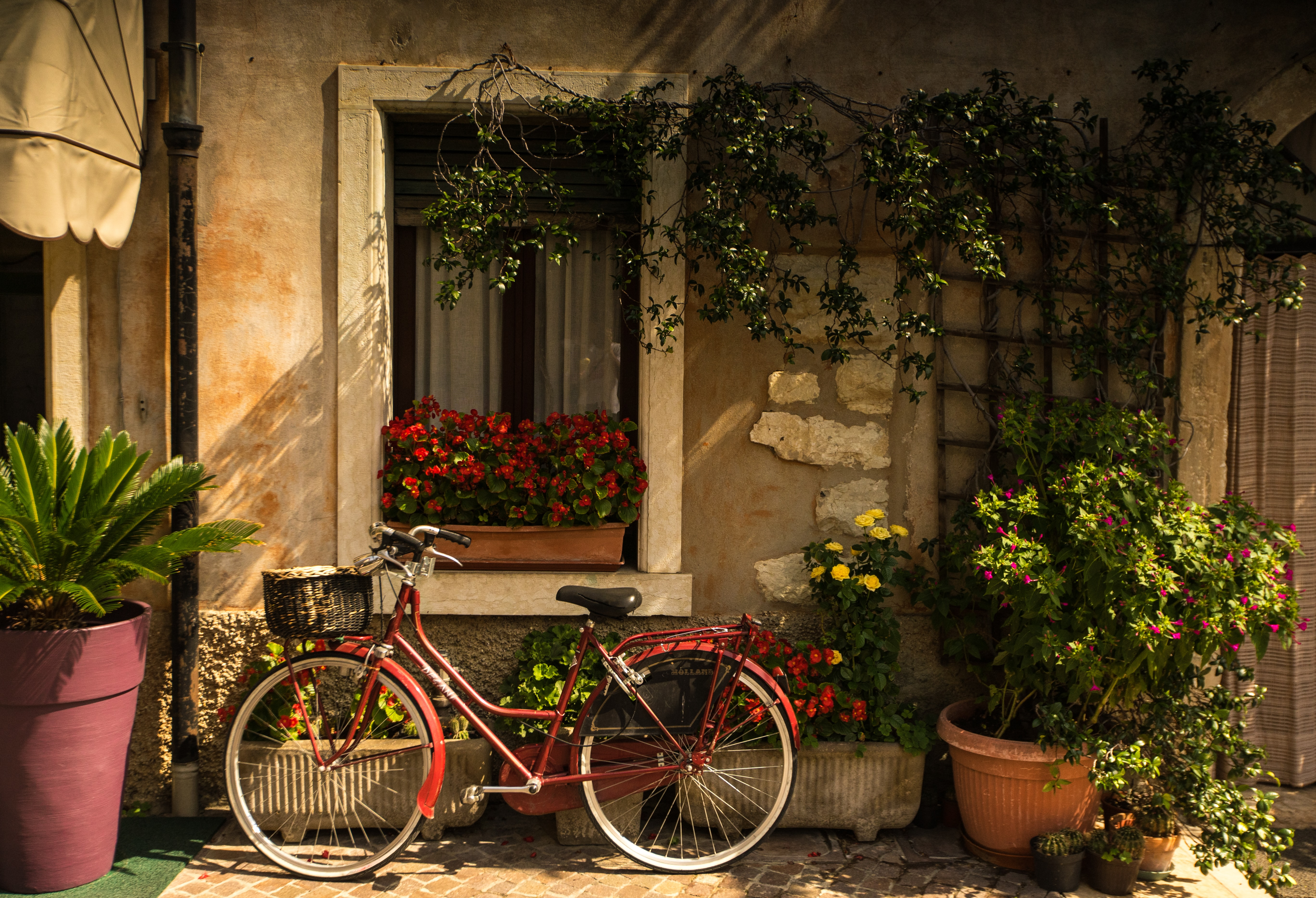 bicycle leaning on house
