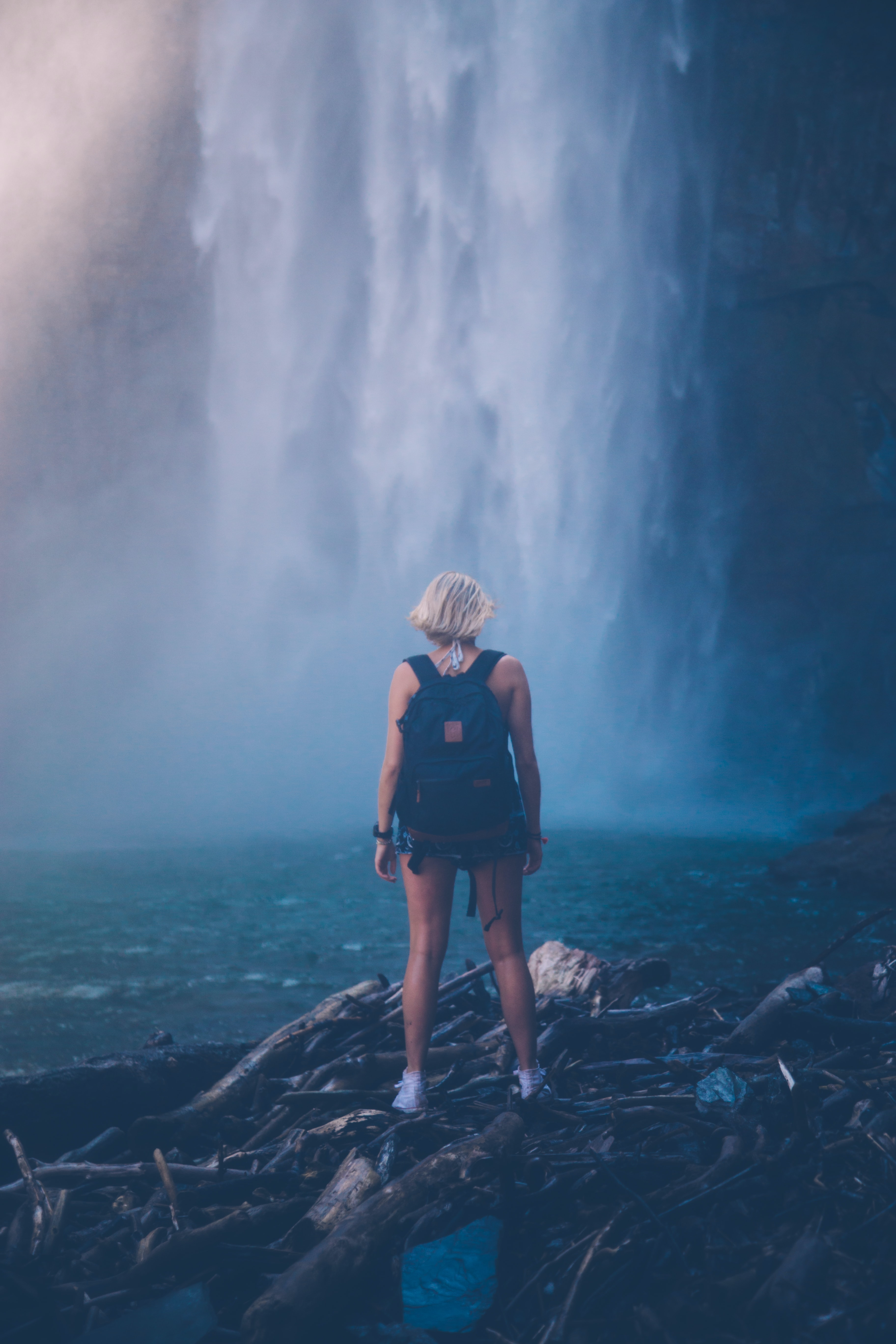 woman standing on tree logs while looking at the waterfalls