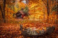 A spring amongst Autumn  autumn stories