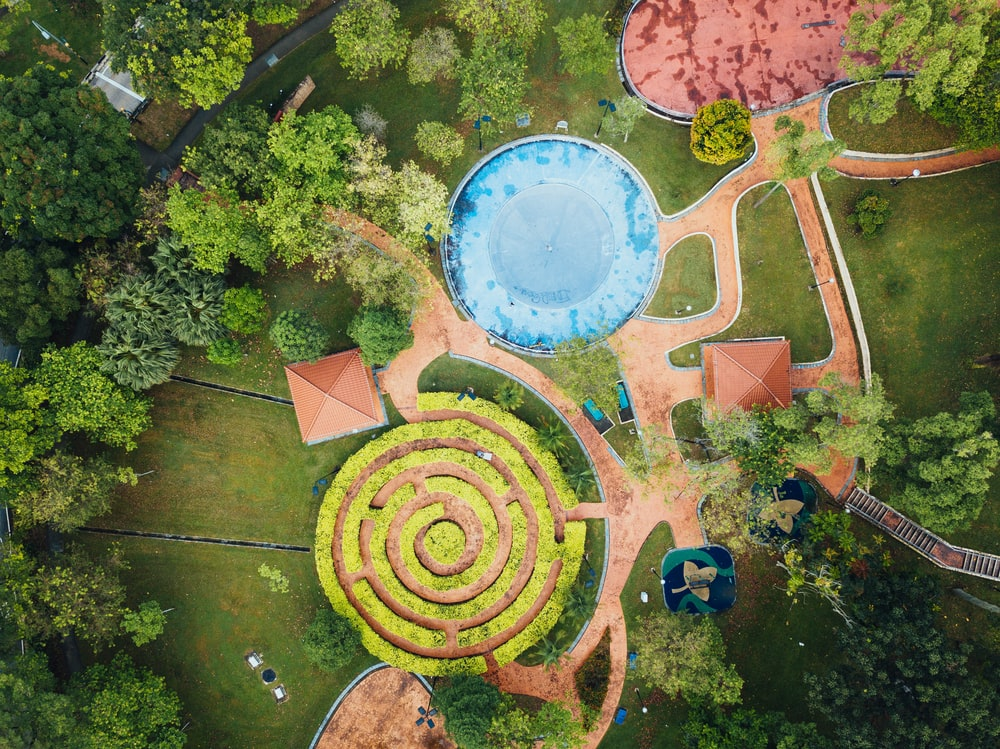 bird's eye view photography of a trees and park