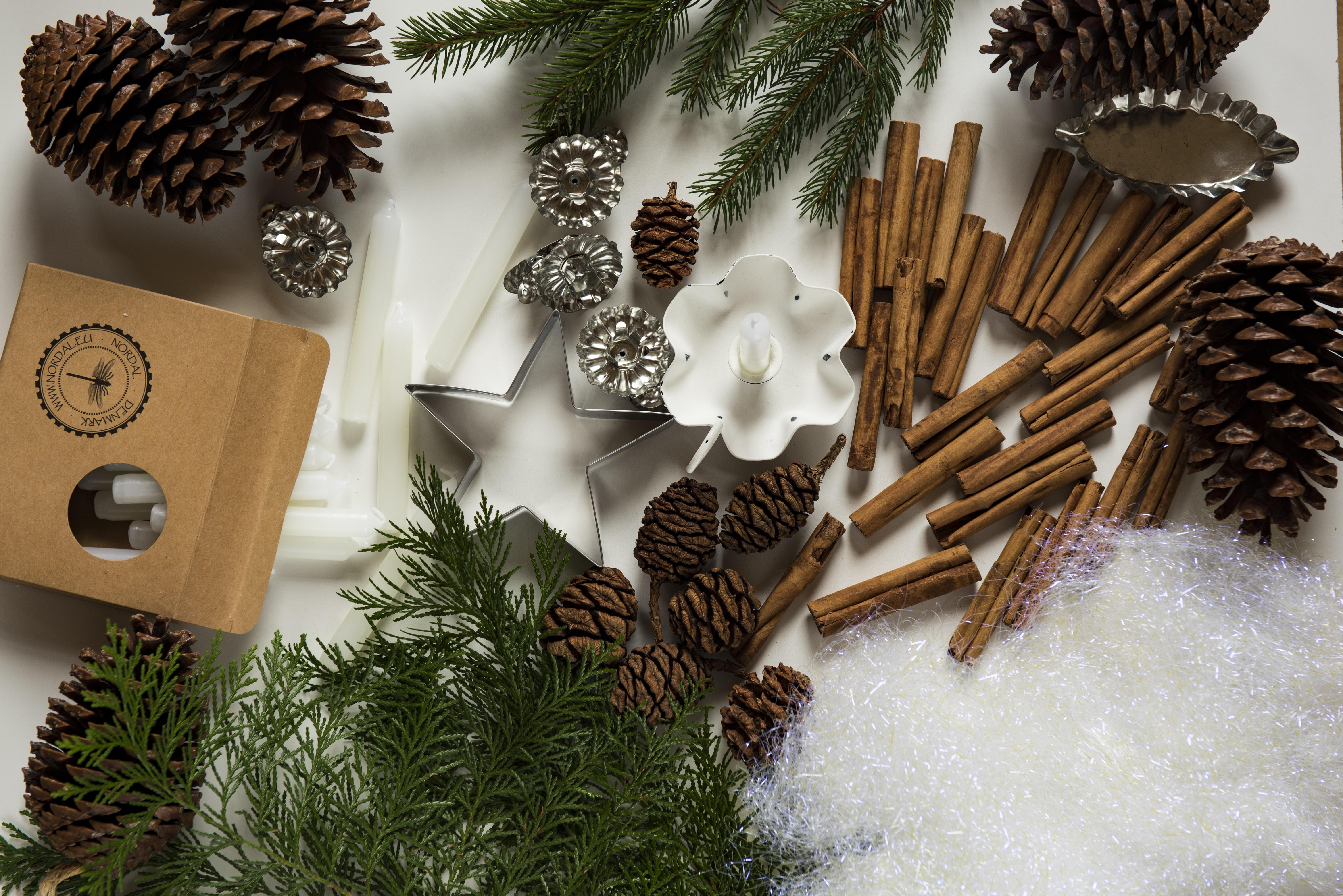 pine cone and cinnamon stick lot