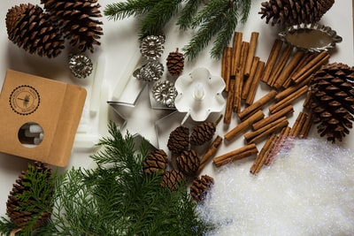 pine cone and cinnamon stick lot decorations zoom background