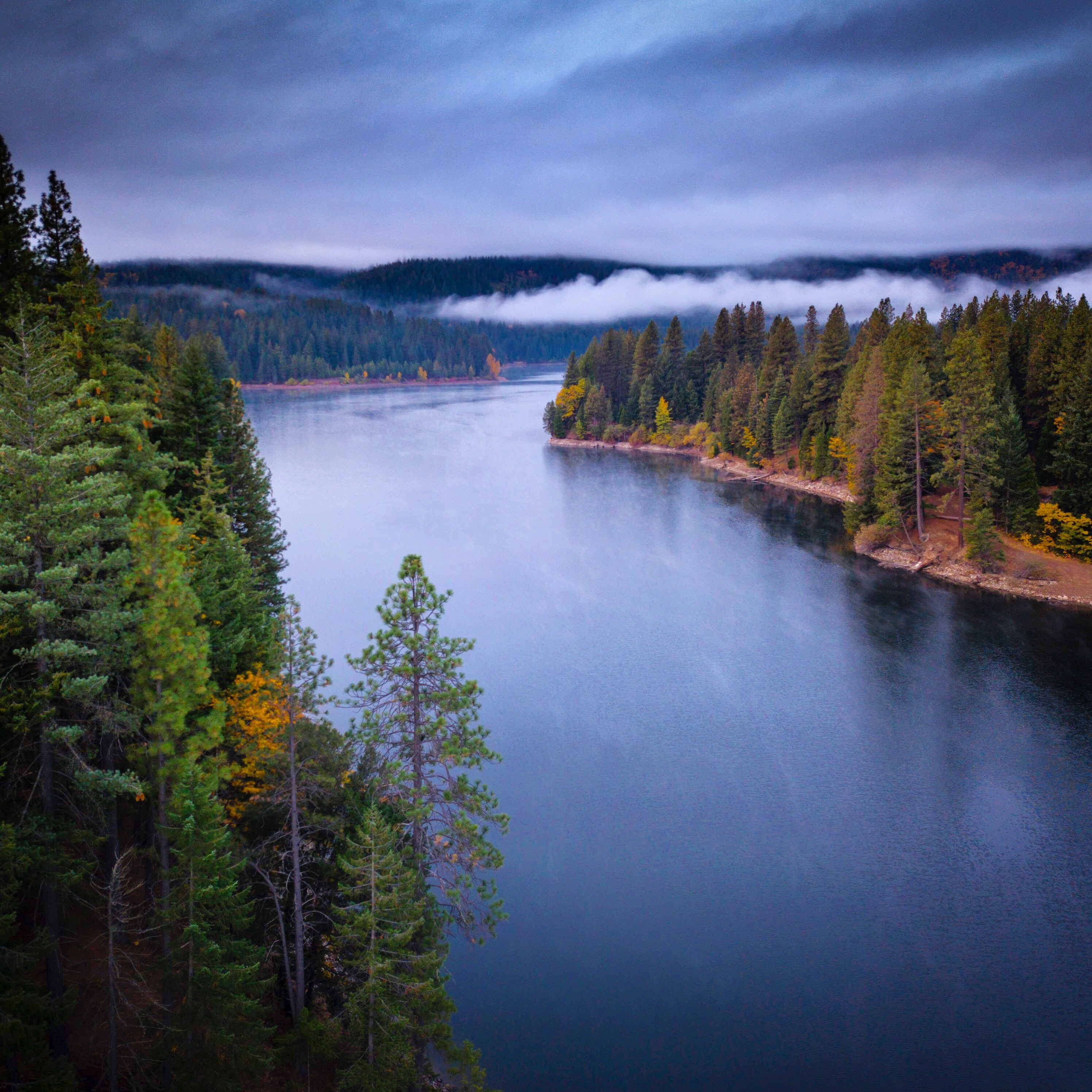 trees near body of water under cloudy sky