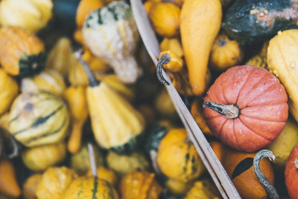 macro photography of fruits