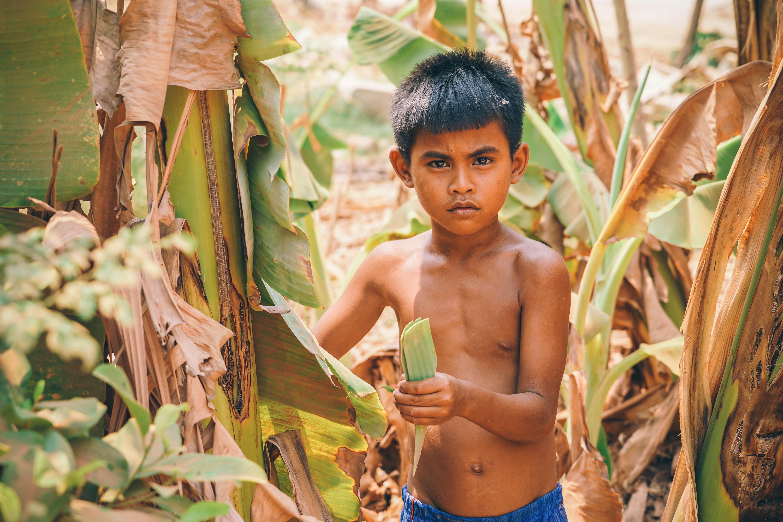 boy standing beside banana plant during daytime