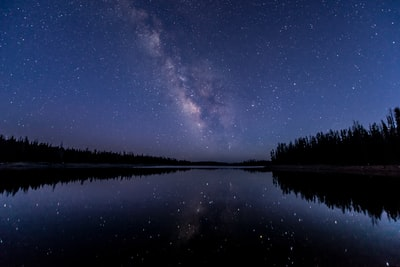 silhouette of trees near body of water under sky with stars night sky zoom background