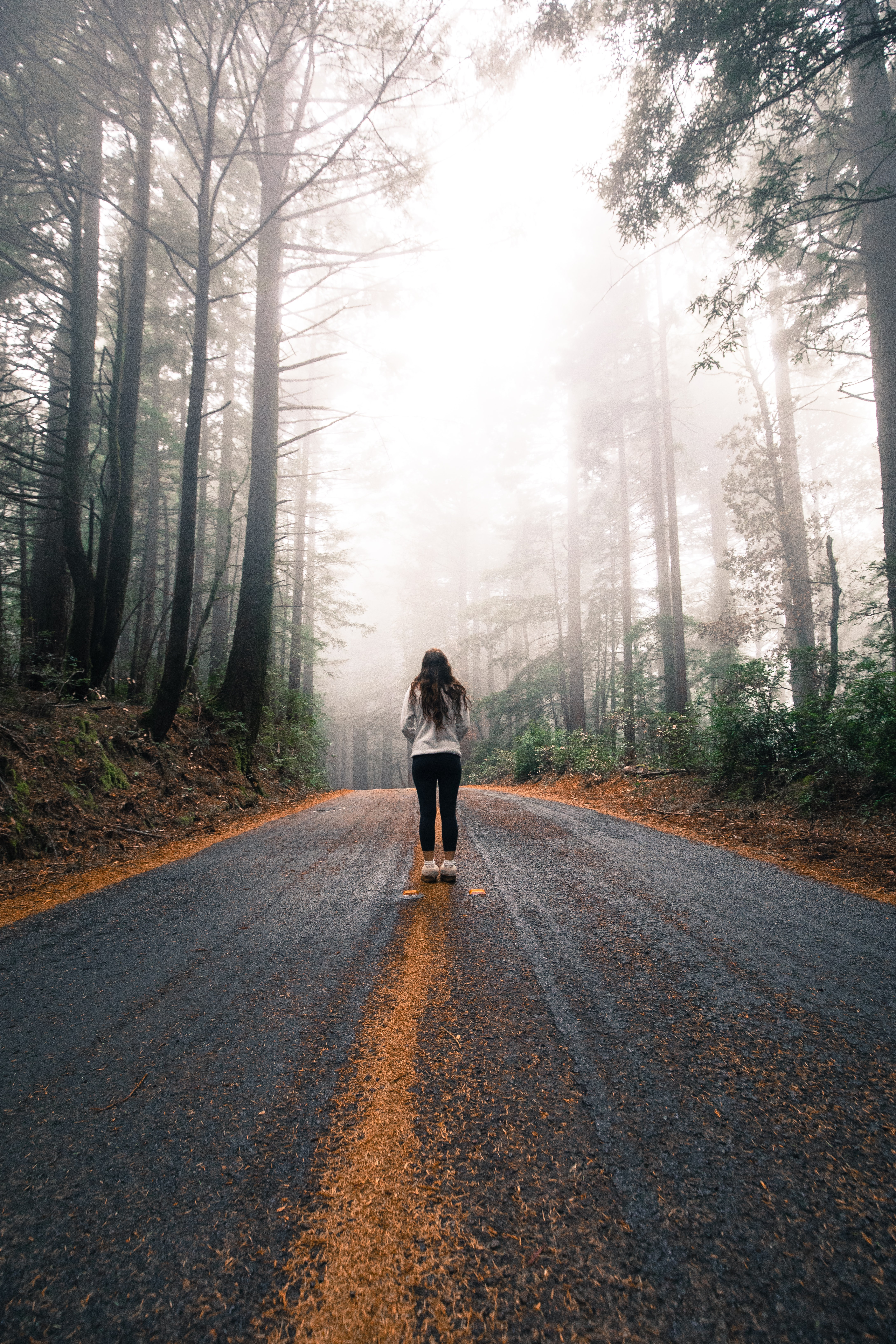 woman standing on paved road surrounded by green leaf trees