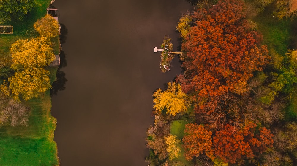 islet on river with docks surrounded by orange and yellow trees aerial photography