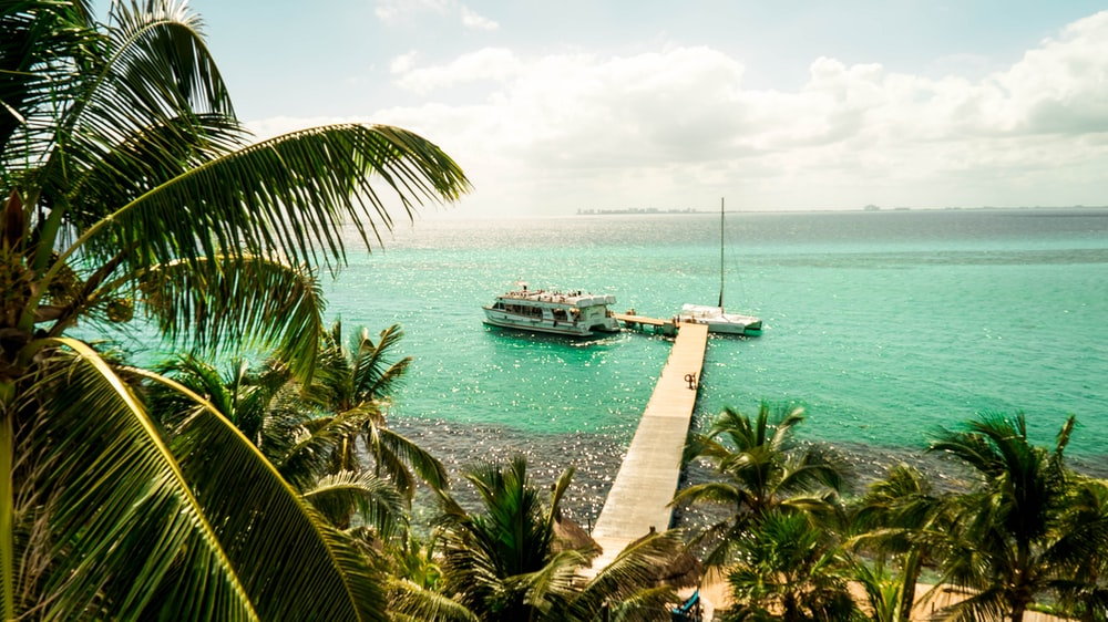 brown sea dock