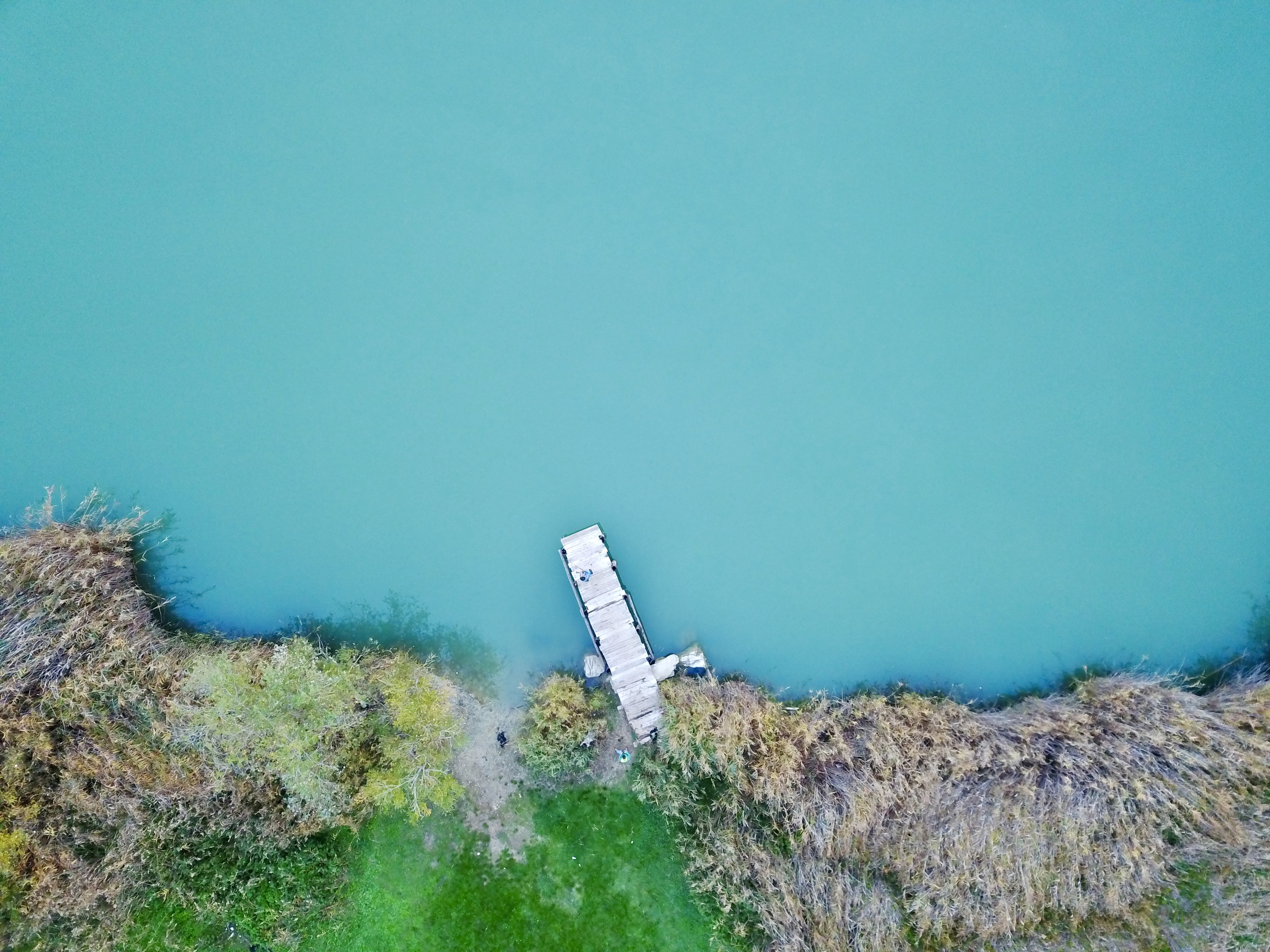 aerial photography of white wooden dock