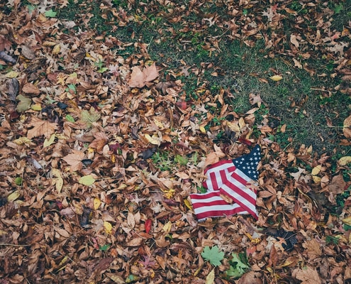 USA flag on brown leaves