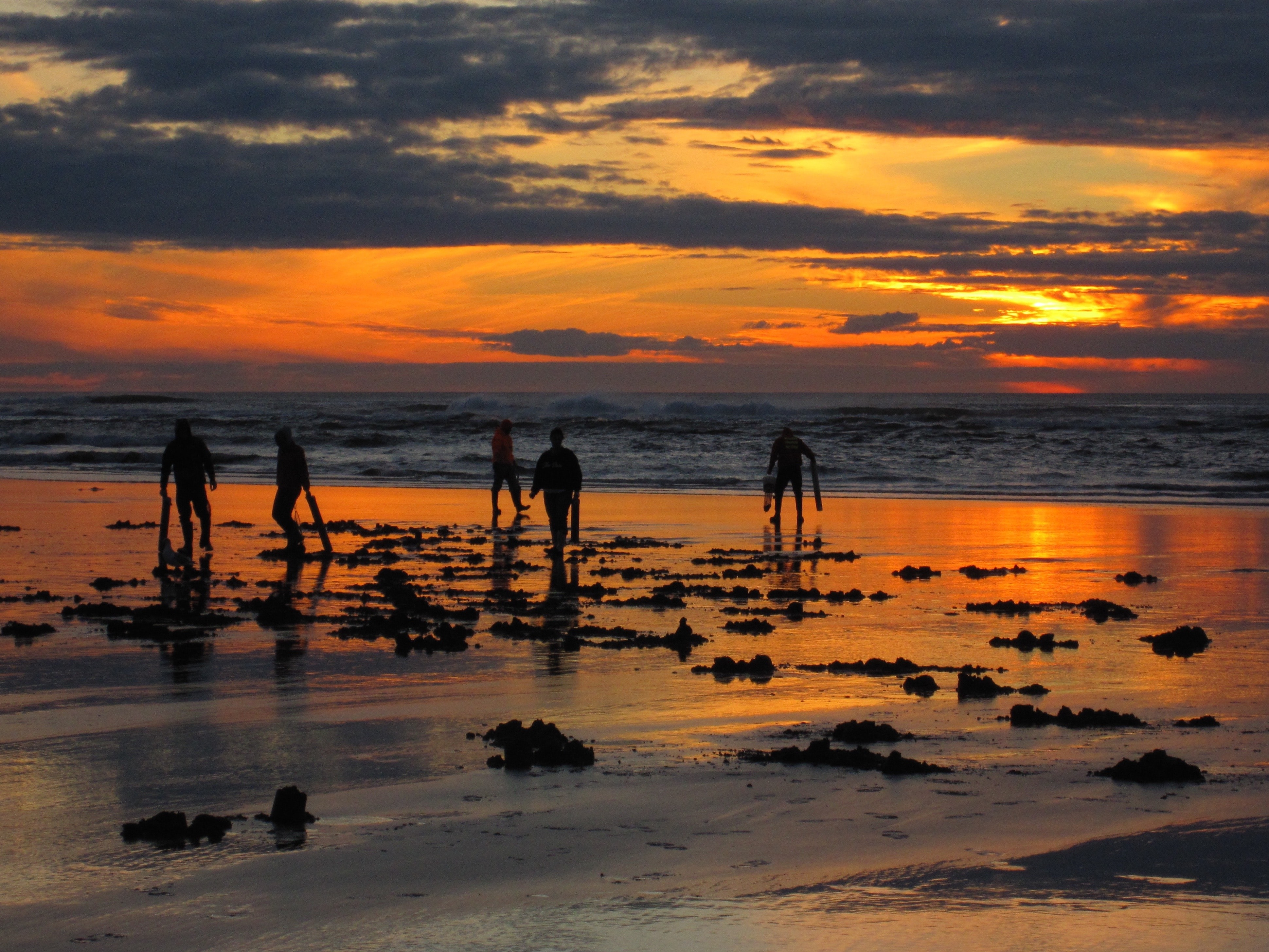 silhouette of people walking on beach during daytime