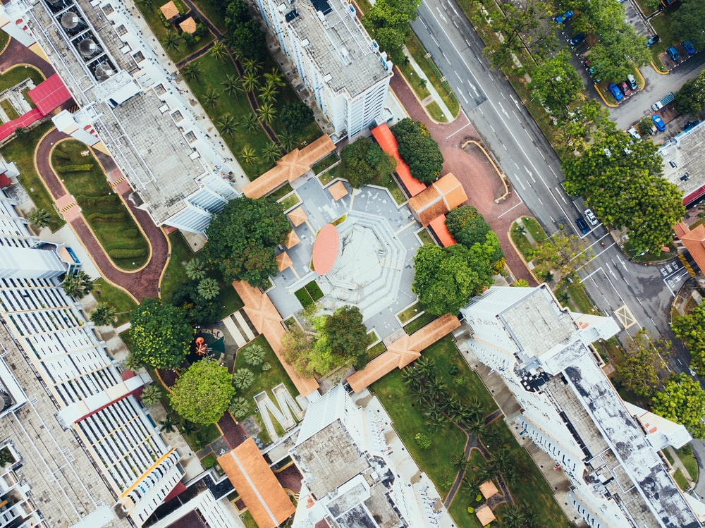 aerial photography of park near high rise buildings