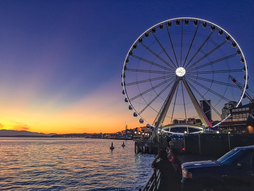white and black Ferris wheel near body of water