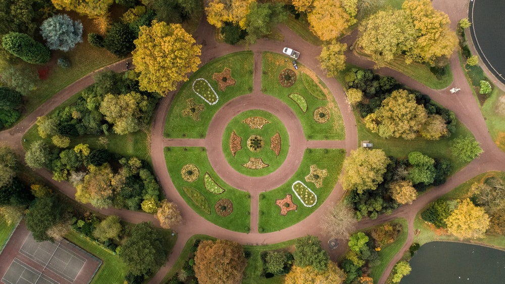 aerial photography of park