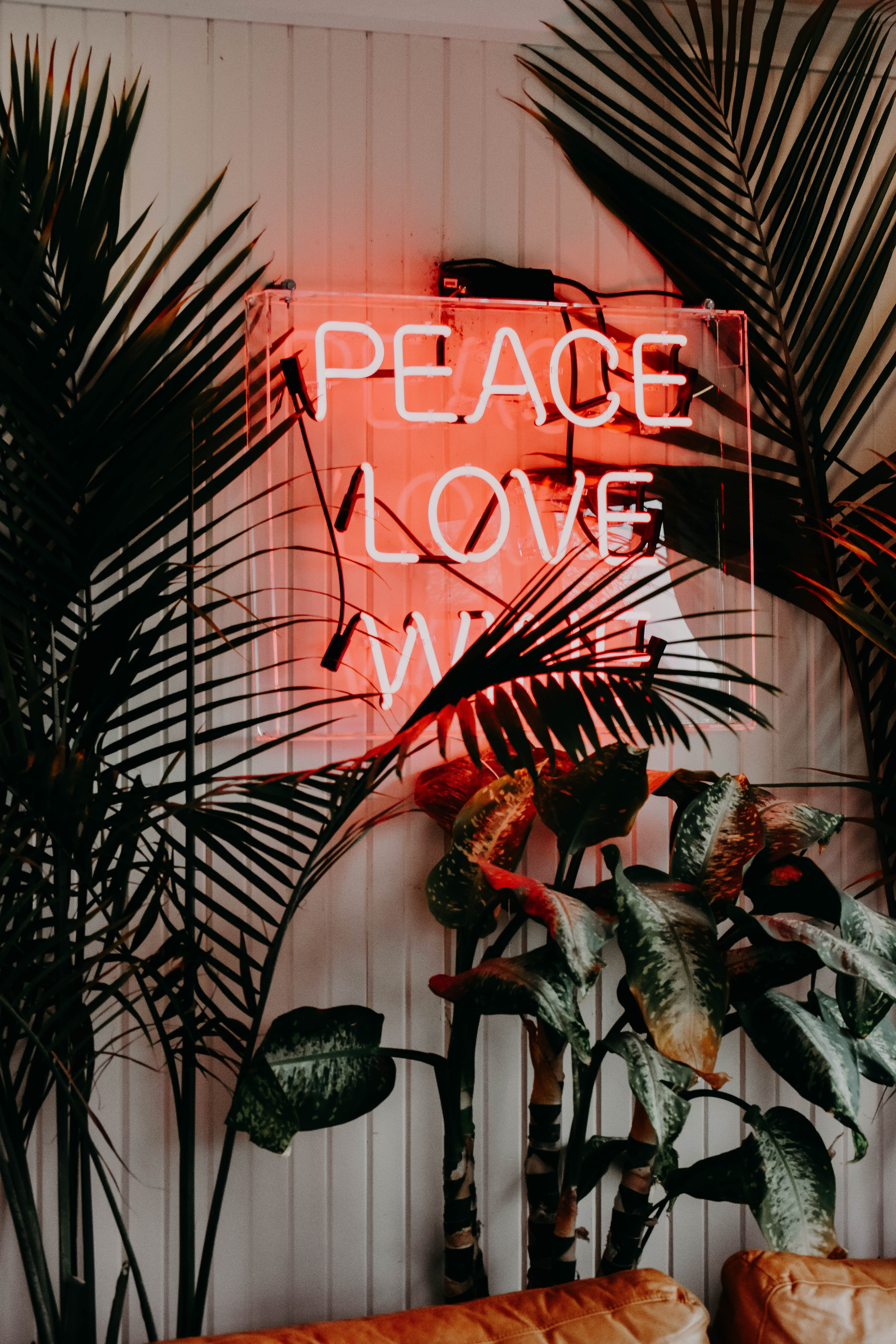 peace love neon signage near green leaf plants