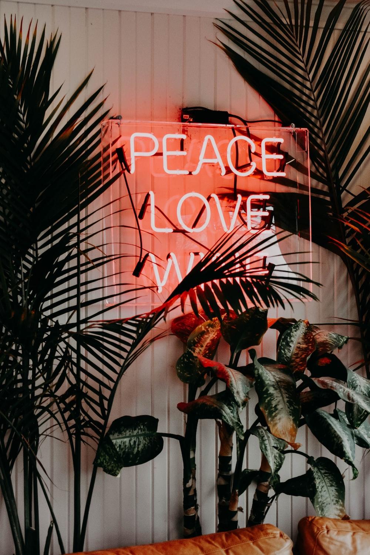 peace love neon signage near green leaf plants