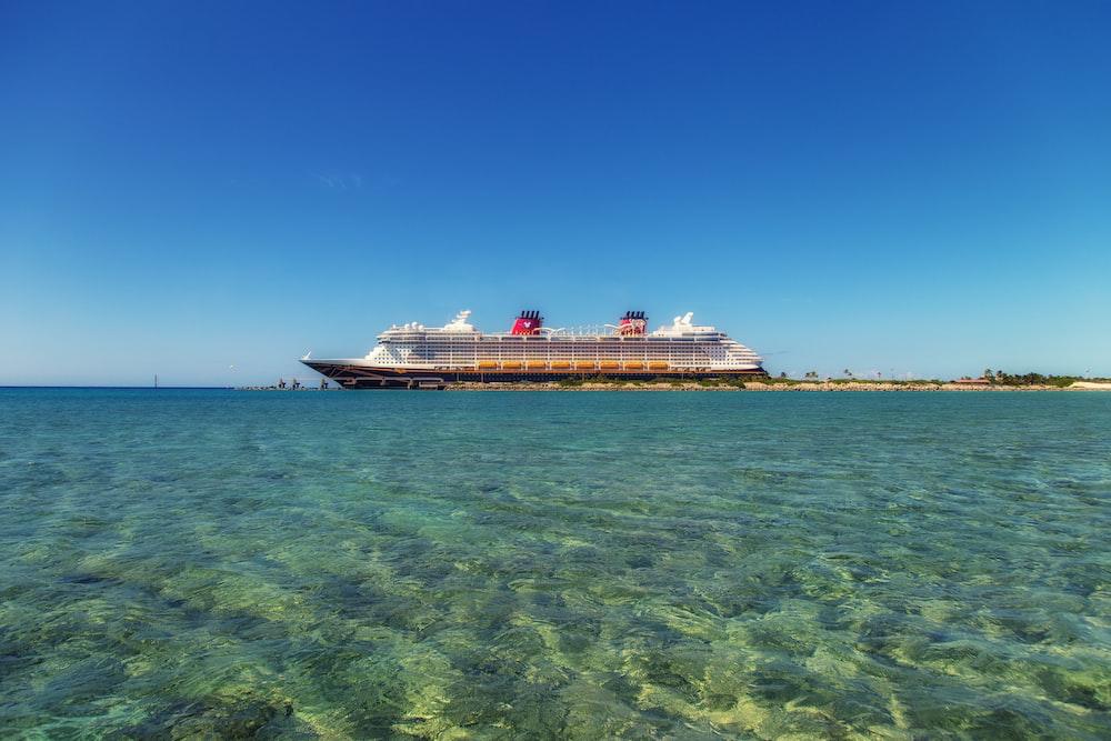 昼間の青空の下で水上に白と黒のクルーズ船