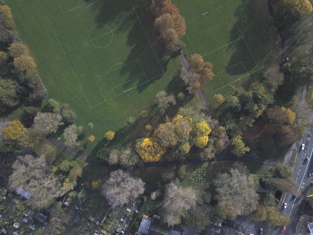 birds eye view photo of stadium and trees