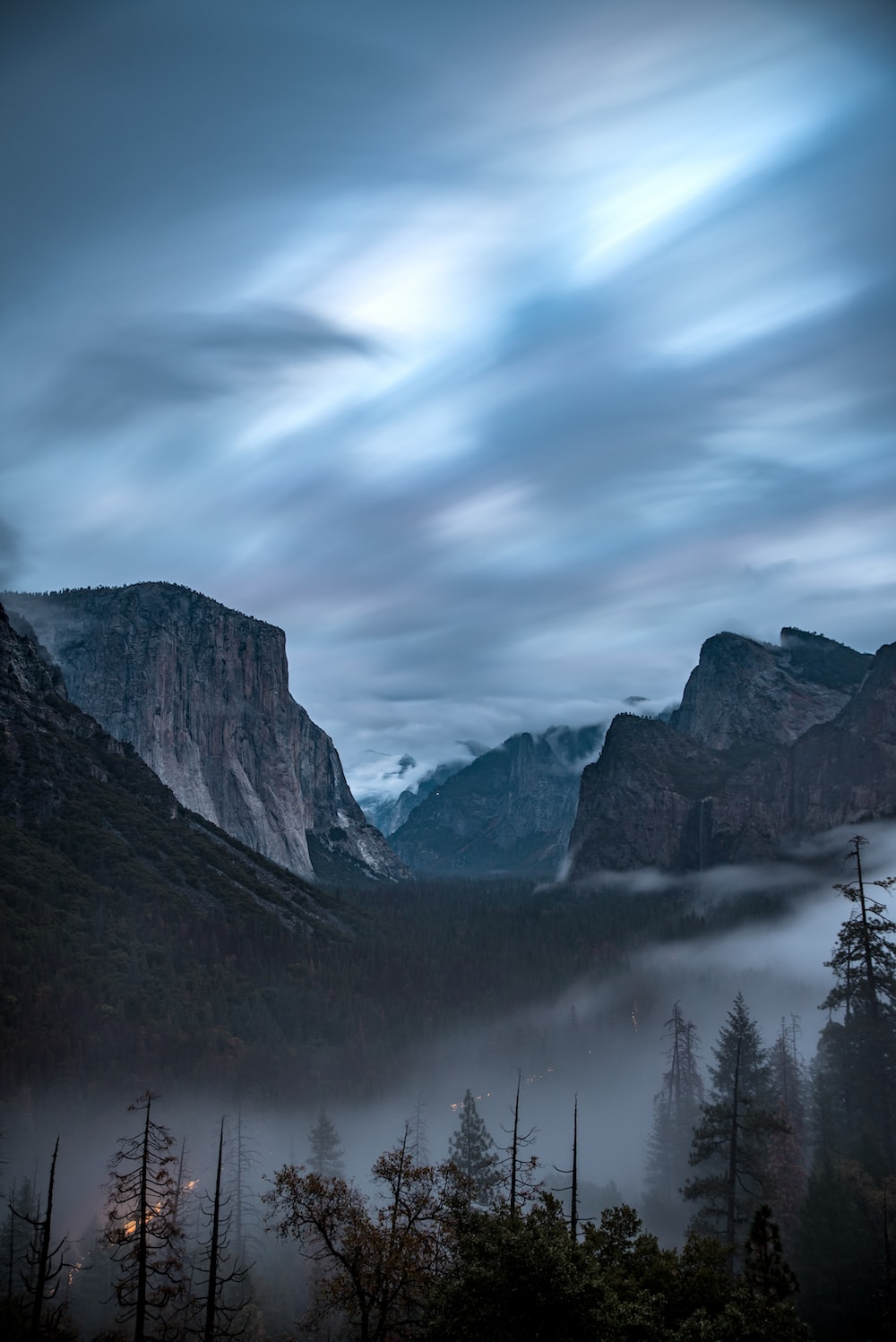 photography of trees and mountain under white sky