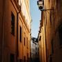 Trentino-Alto Adige, l'incanto parte dall'uva