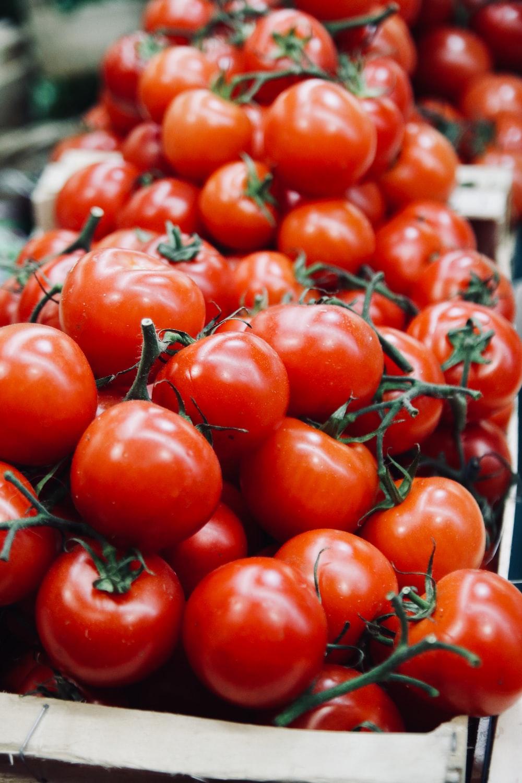 tomatoe lot