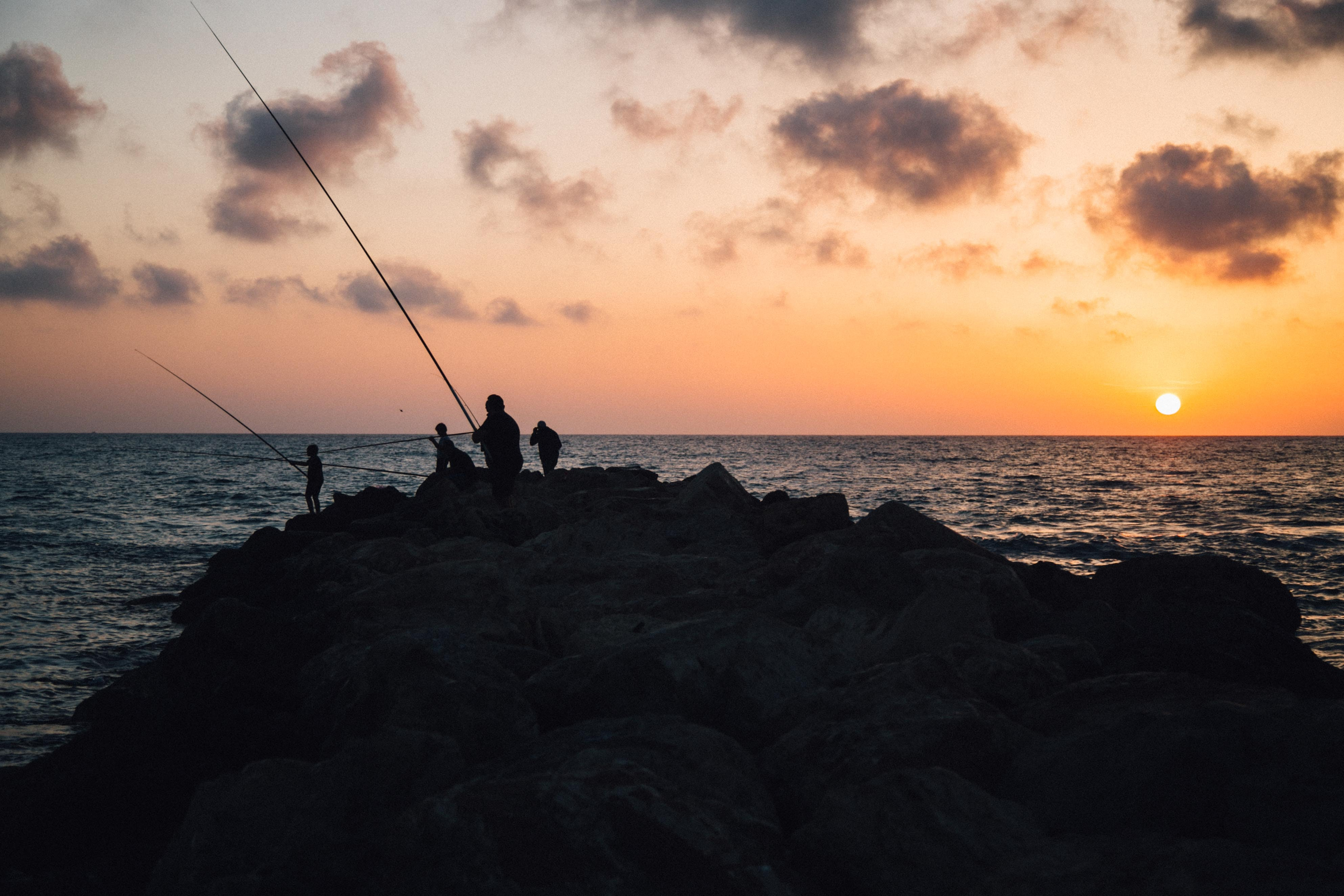 four people holding fishing rods facing sea at sunset