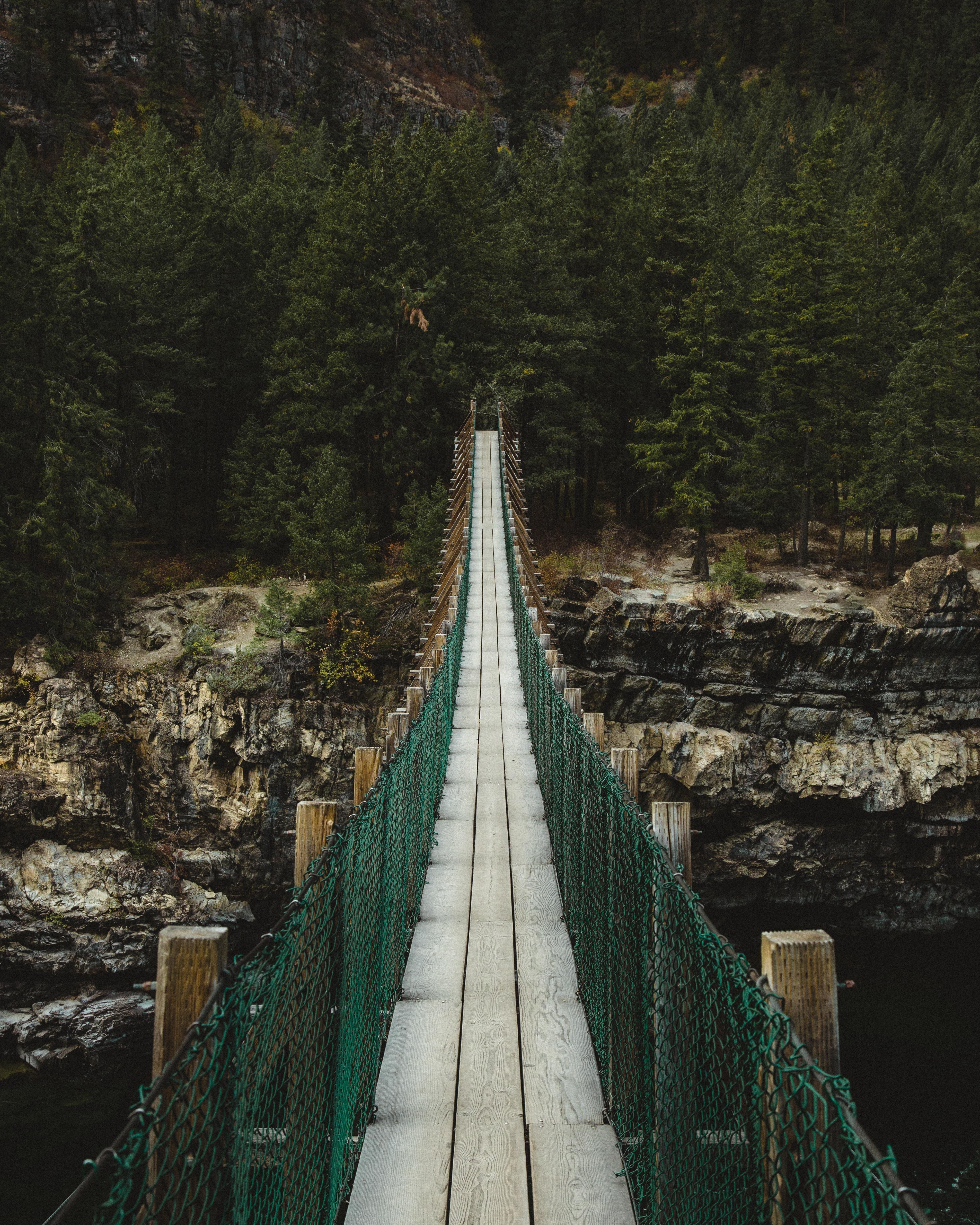 narrow wooden bridge near trees