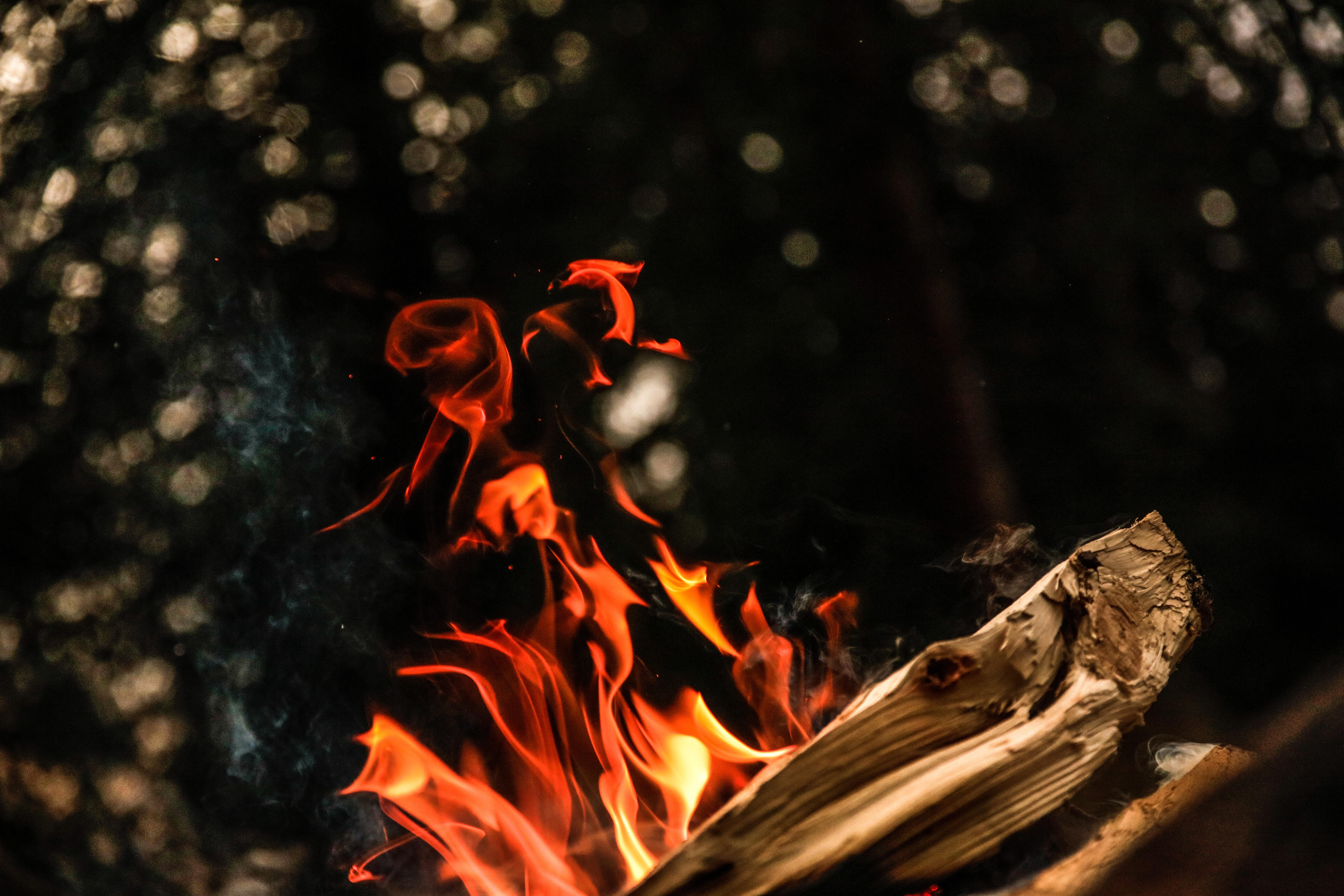 close up photograph of bonfire