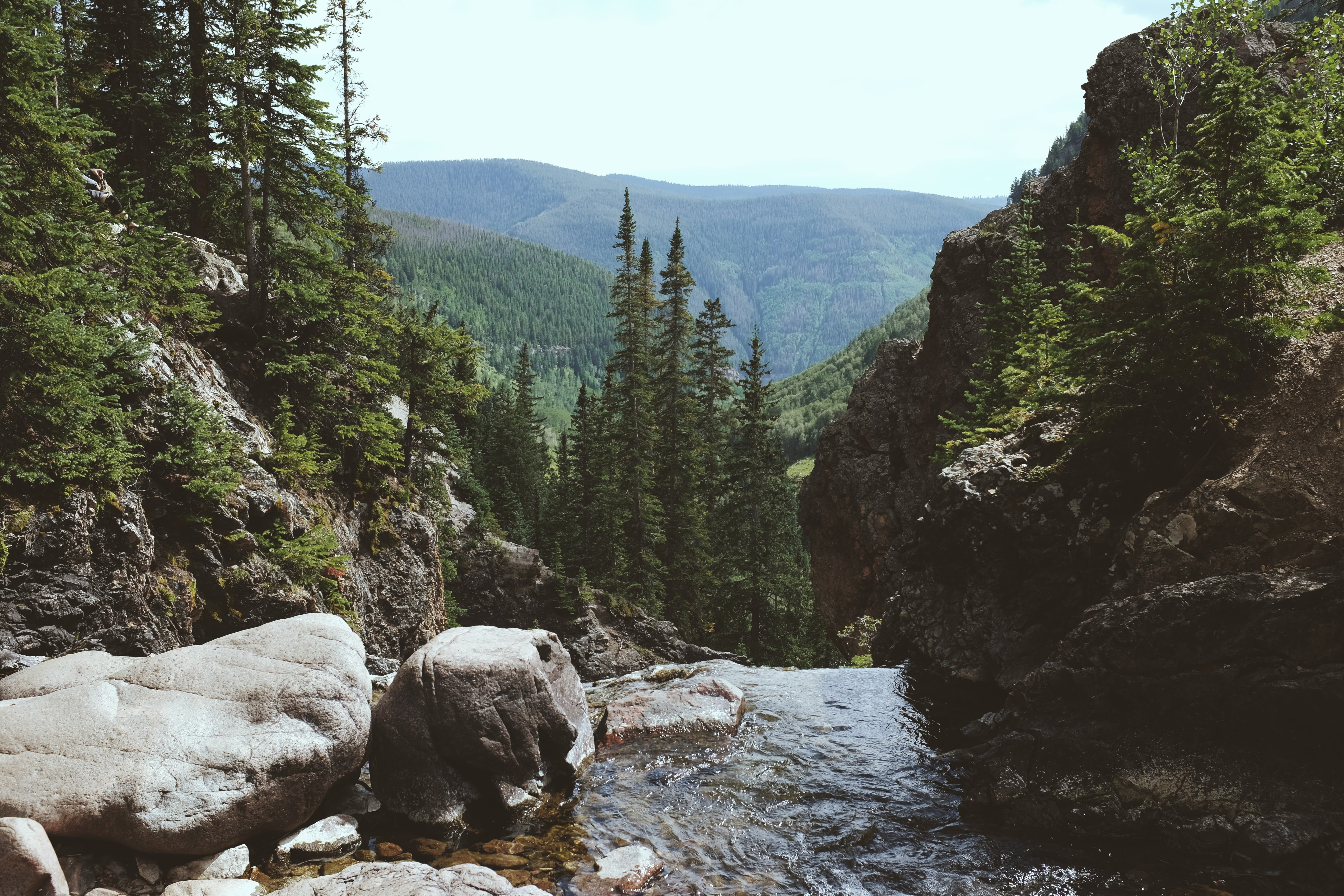 river between rocks and pine trees at daytime