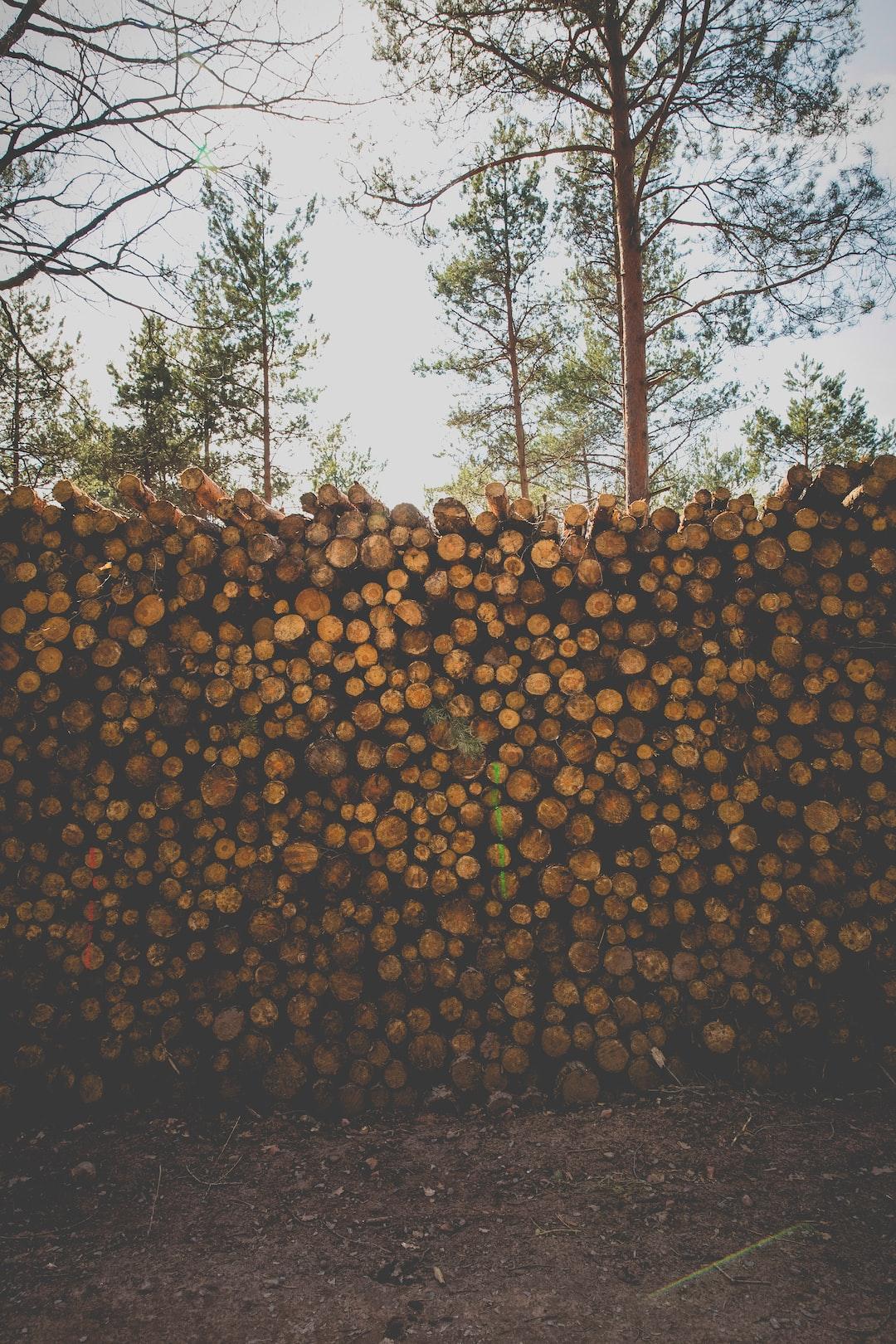 Historical logs .. soooo yesterday ..